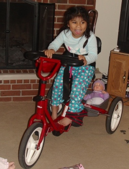 A brand new, very special tricycle for Christmas