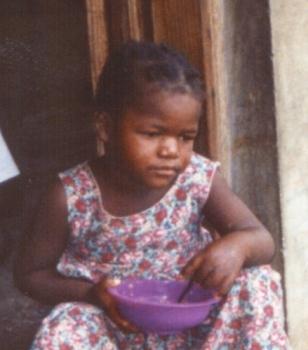 Adopting Madlin 2003
