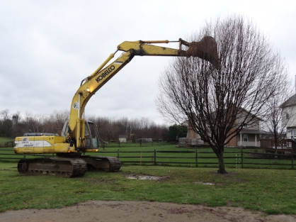 Home Addition - Goodbye G'pa Tree #1